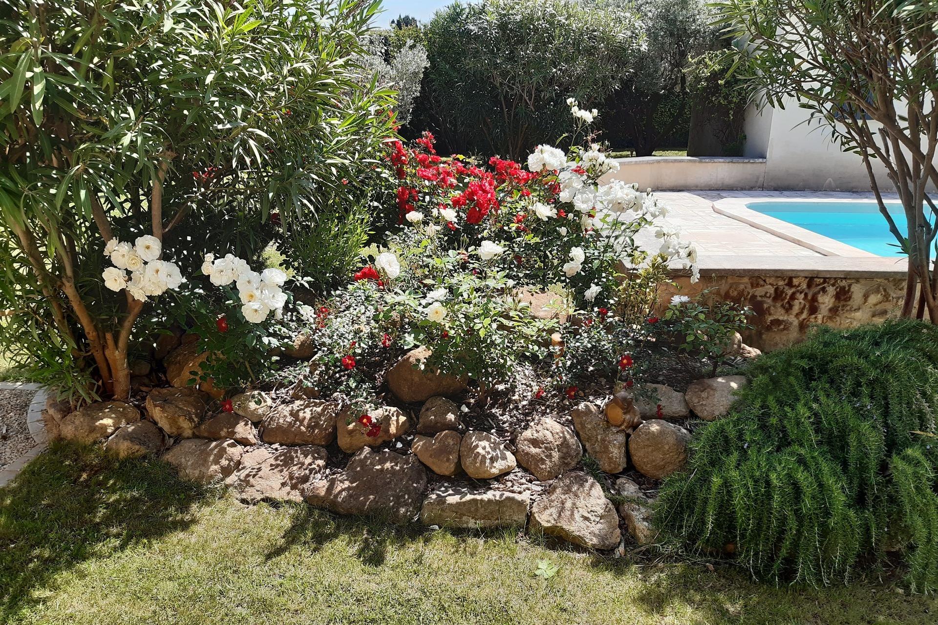 Jardin et piscine Maillane